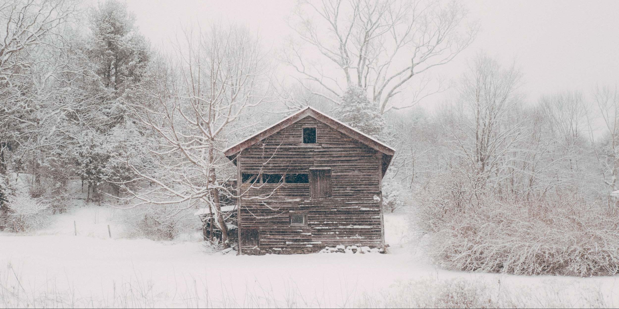 Cabin Life_6049